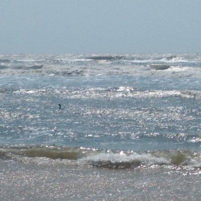 Praia limpar tranquila, ideal para quem deseja descansar, fazer caminhadas e pescar.... ainda possui muitas conchinhas 🥰