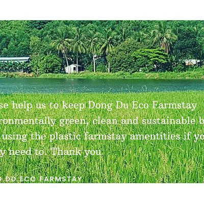Dong Du Eco Farm Stay