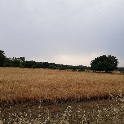 View from the road in a majestic part of the Noto countryside.