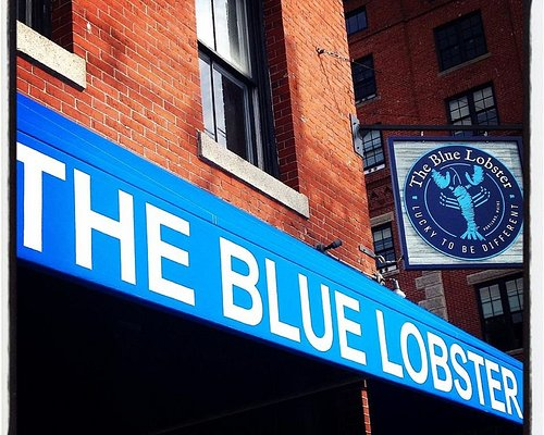 You can't miss our blue awning!