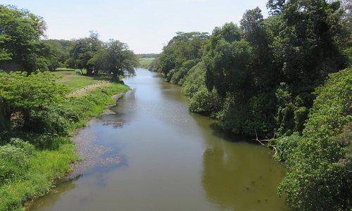 Aperçu de la rivière de la Foa en aval de la passerelle.