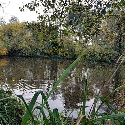 Broadwater Park