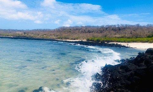 Esta playa se encuentra ubicada en la Isla Floreana y es conocida como la playa de botella, donde encontraras colonias de lobos marinos y tortugas anidando en esta playa de arena blanca.