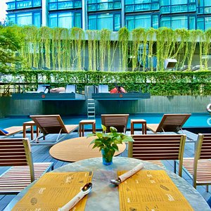 view of Pasta & Pool, overlooking to pool + greenery of Hotel Building