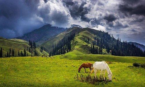 Thandiani Pakistan