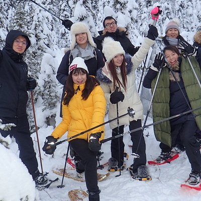 Join us for an amazing snowshoe tour in the boreal forest! Leaf Out Nature Guides: Snowshoe Tours and Nature Guiding in Fairbanks, Alaska.