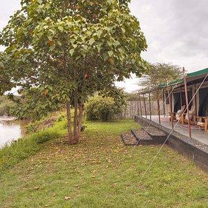 Asilia Ol Pejeta Bush Camp - Family tent exterior with view