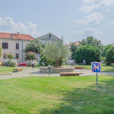 Park na Placu Brolo