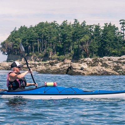 Overnight kayaking trip to Clark Island