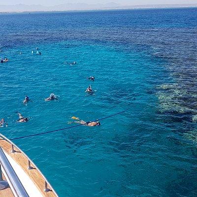 Schnorcheln am Korallenriff