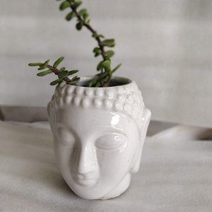 Ceramic Planters at Natures kart