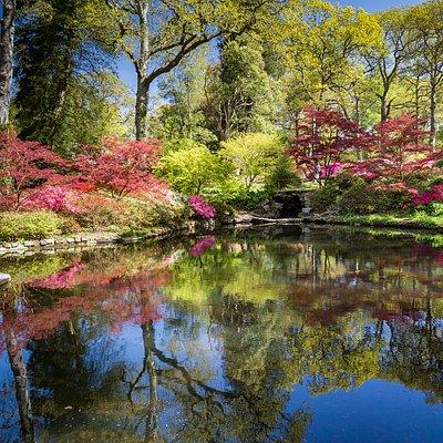 The Azalea Bowl in spring