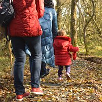 Find the hidden treasures and collect stickers to become a Qualified Nature Sleuth