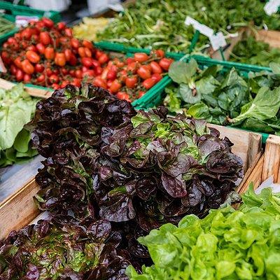 Frische Salate aus der Region.