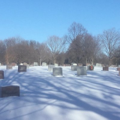 A lovely corner, trees, and shadows of a winter day in Roselawn Cemetery.