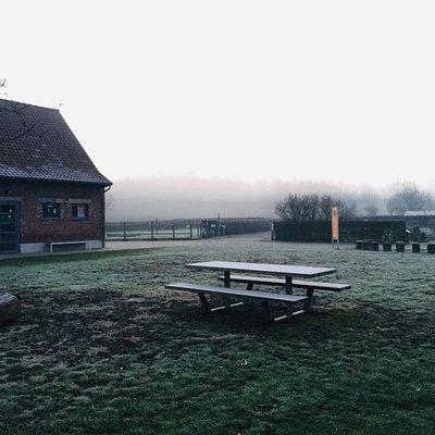 Winter in de Palingbeek