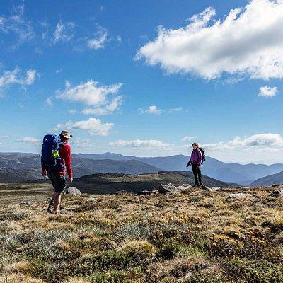 Hiking at Alpine National Park