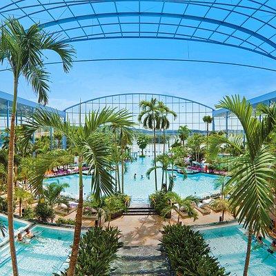 Auffahrbares Panoramadach im Palmenparadies.