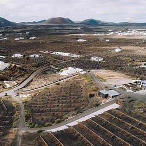 La Bodega Vega de Yuco se erige en mitad del Lomo de Tese, integrada en un valle de viñedos, ceniza volcánica y algunas casas blancas de arquitectura tradicional que salpican el idílico paisaje vitícola del entorno de Masdache (Lanzarote, Islas Canarias). La bodega, flanqueada además por el Parque Natural de Los Volcanes, nos ofrece unos vinos impregnados por el carácter del volcán y por el respeto al esfuerzo del viticultor.