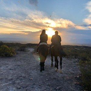 Cavalgada ao final da tarde