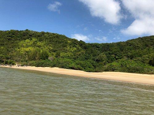 A praia do Cardoso é a primeira praia avistada para quem faz a trilha do Parque Natural da Costeira de Zimbros.