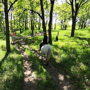 На фото наша очередная прогулка верхом в поля! Безумно красивые места! Спокойные лошади, подойдут как для взрослых, так и для детей, отличное место для отдыха. Мы попали сюда по подарочному сертификату, можно договориться о прогулке и по телефону.