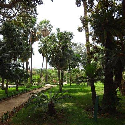 Giardini Reali di Palazzo dei Normanni - Palermo, Sicily