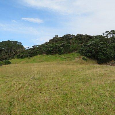 Hier begint het wandelpad naar boven. Midden op de foto bovenaan de bosrand is het uitzichtpunt zichtbaar (beetje inzoomen).