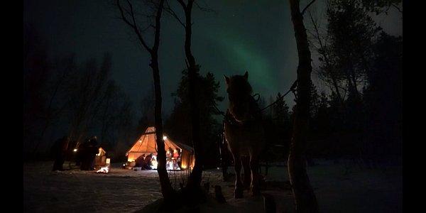 Sleigh ride under the northern lights