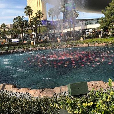 NV, Las Vegas, Wynn Esplande Fountain - 2