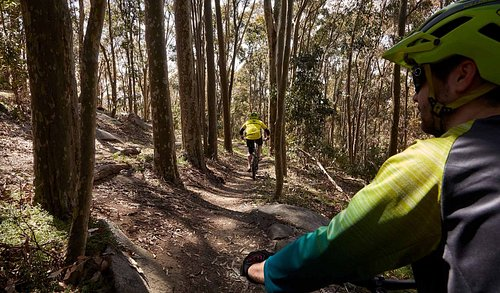 Mountain Biking in Lysterfield Park
