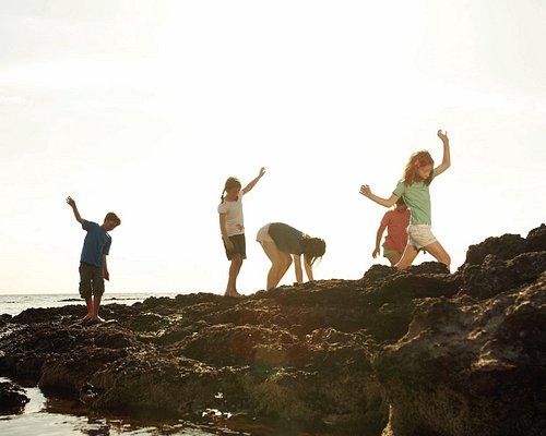 Rockpooling at Ricketts Point Marine Sanctuary