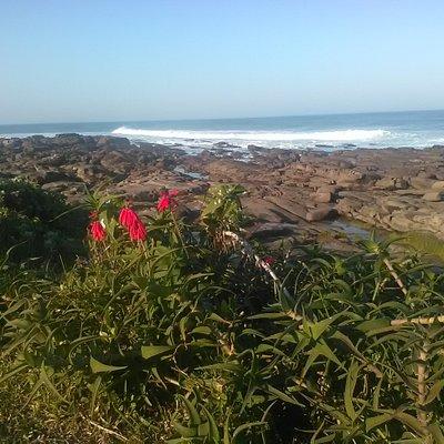 Beautiful Kidd's Beach