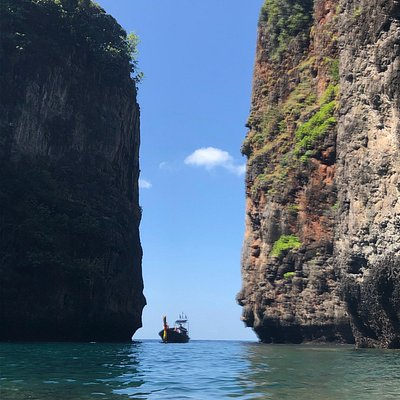 An amazing find in Phi Phi Don
