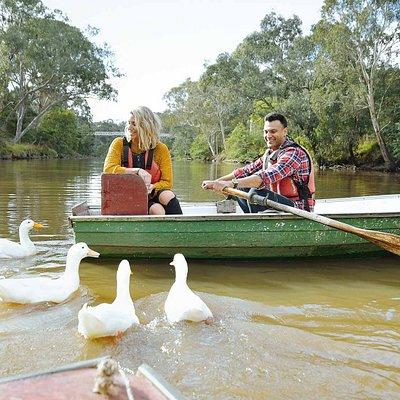 Boating, Yarra Bend Park