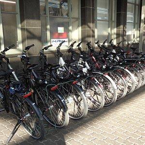 たくさんの貸自転車が並んでいます