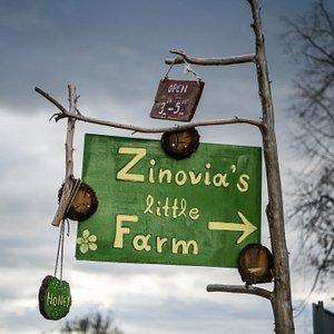 zinovia's little farm
