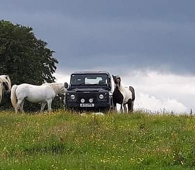Ralph (Landrover) on tour.. our Horse Safari