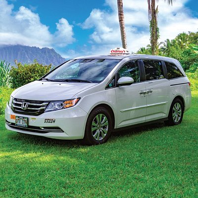 Our minivans are perfect for a family of four with luggage (4 checked and 4 carry-on) to go to and from the airport. You'll enjoy a private ride directly to your hotel.   No luggage, minivans can easily transport a group of up to 6.