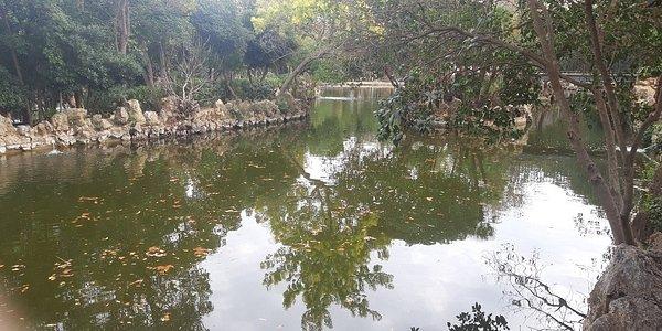 Parc del Llac