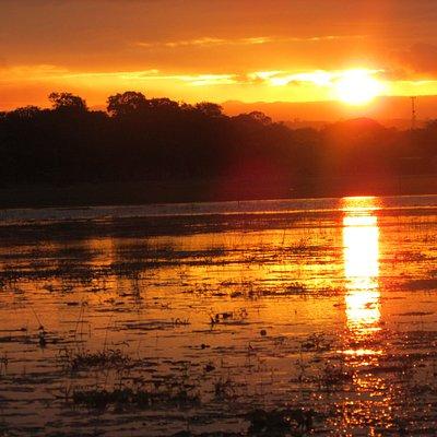 Amazing Sunset in Tisma Wetland.