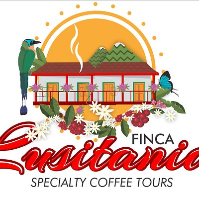 The best specialty coffee tours