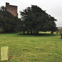 10.  Warehorne War Memorial, Warehorne, Kent;  Commonwealth War Grave of Percy Harden and St Matthew's Church
