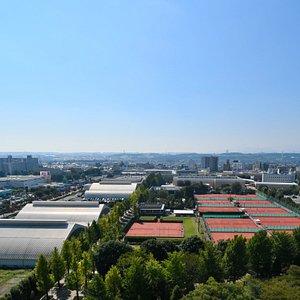 昭和の森テニスセンター全景