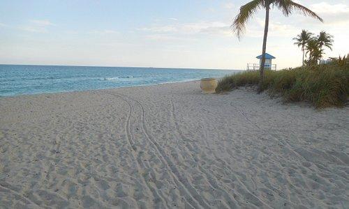 Keating Beach, Looking South