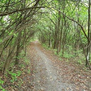 Hiking trail, acesso thorugh golf course