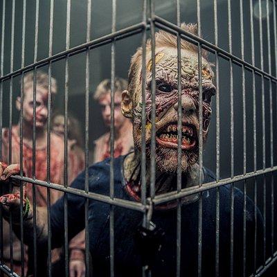 Vores zombier hungrer efter nye gæster...