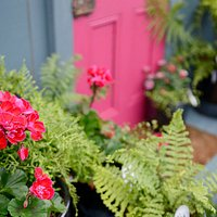Seek inspiration and ideas in our garden shop!