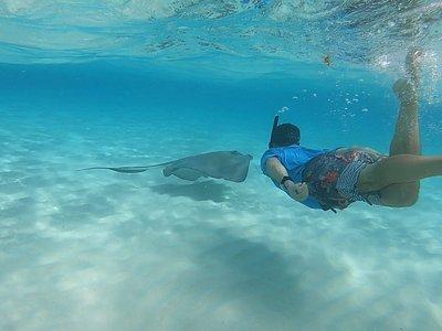 cool snorkeling