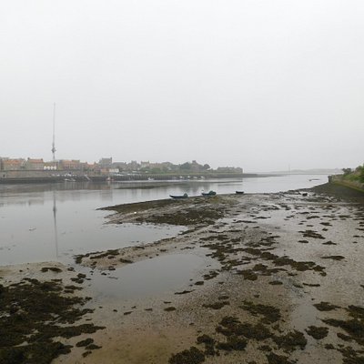 Low tide, looking seaward from Berwick Bridge (Tweedmouth end) on a hazy, cold day.